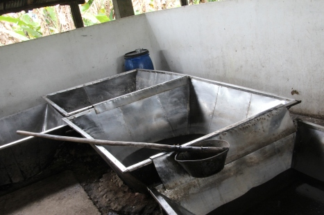 brow sugar proces, panela